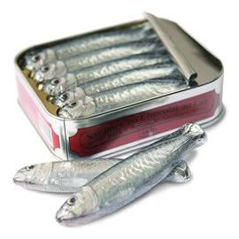Michel Cluizel Tin of Milk Chocolate Sardines
